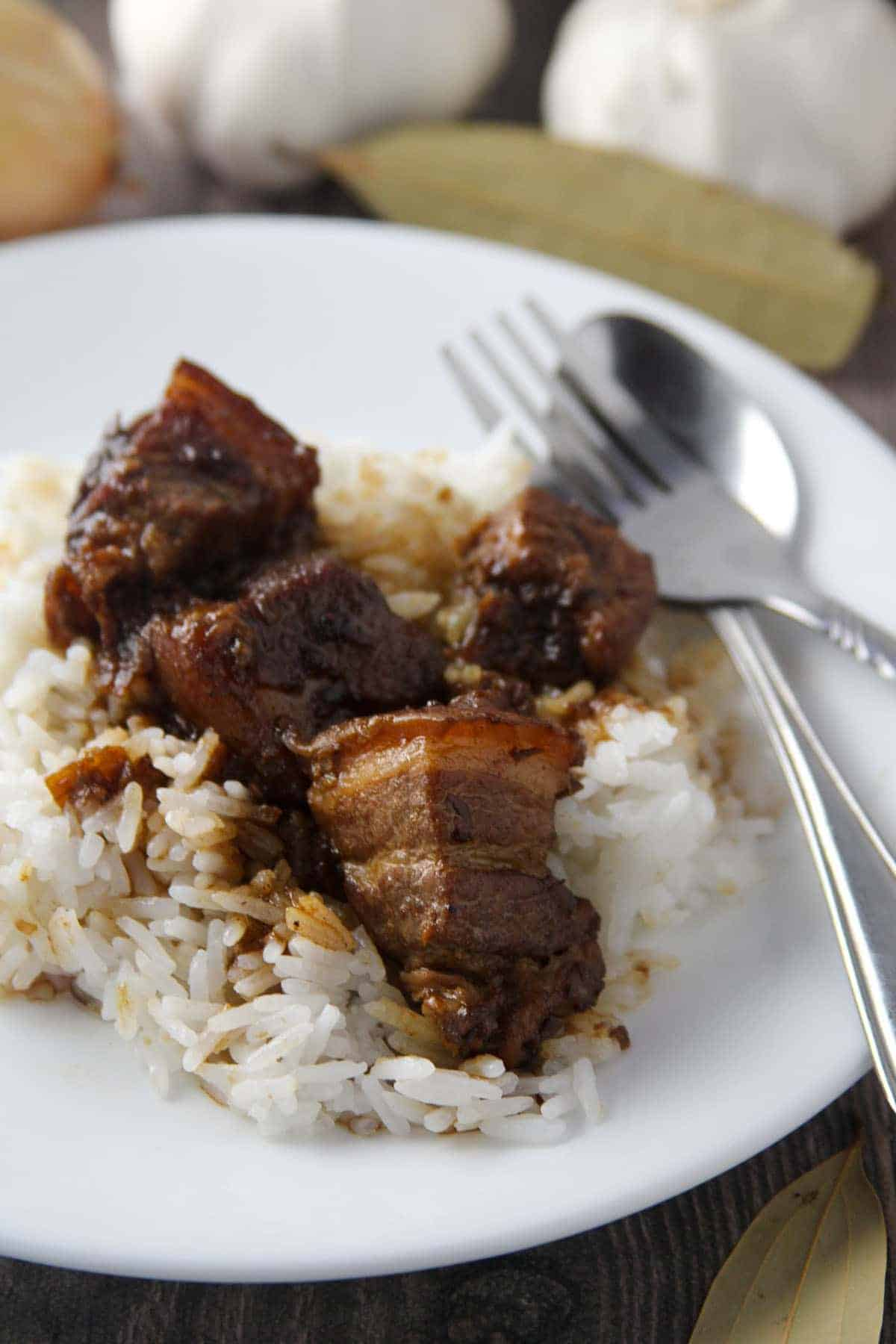 Pork Adobo with steamed rice on a plate