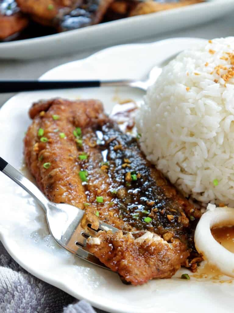 milkfish cooked a la pobre on a white plate with steamed rice