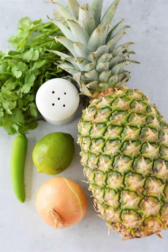 pineapple, lime, chili pepper, cilantro, onion, salt shaker