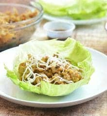 minced chicken in iceberg lettuce cup served on a plate