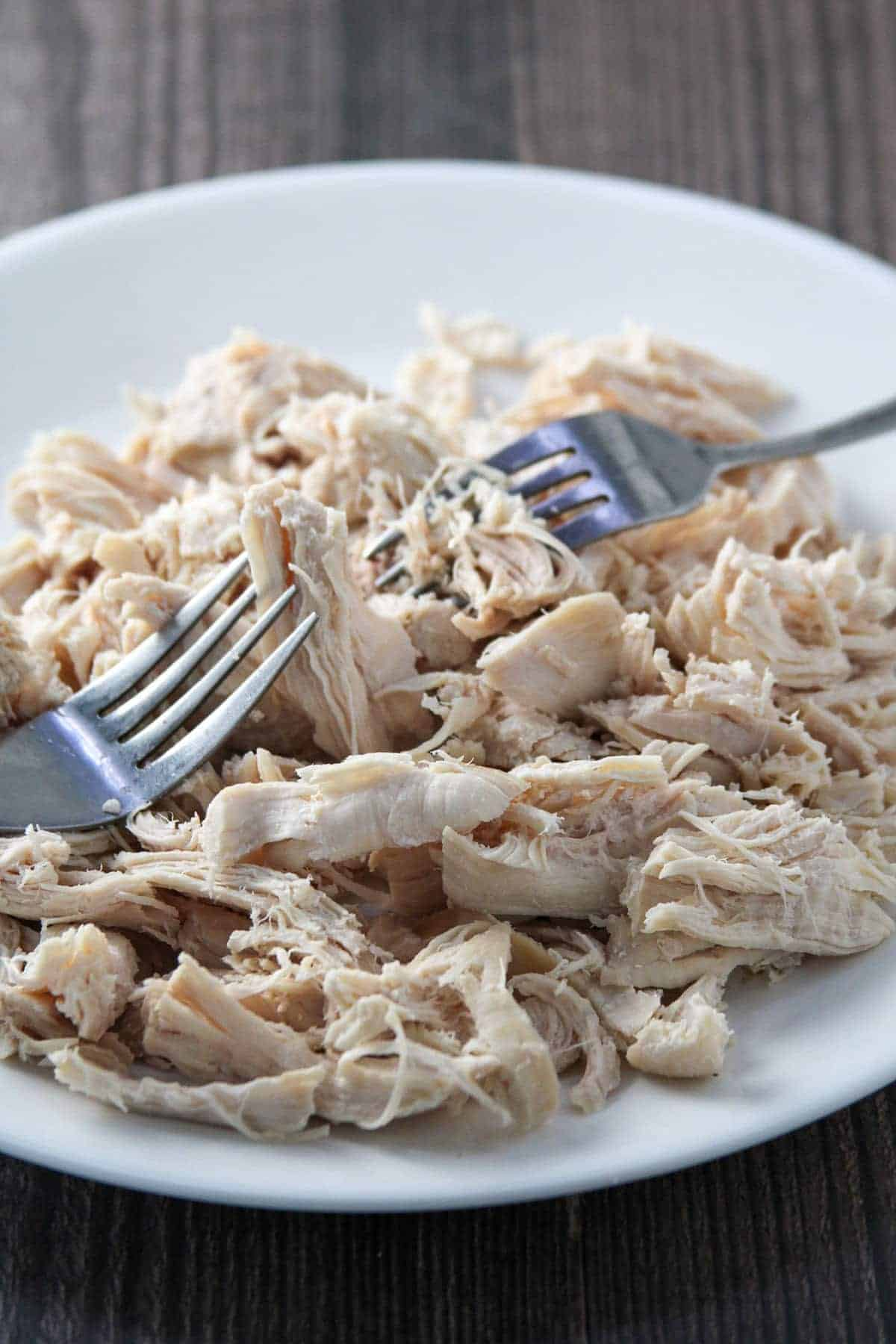 shredding poached chicken breast with two forks on a white plate
